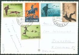 CV Du 23-5-1964 Vers Bruxelles Et Affranchie Avec Série CHASSE (Hunting), Chien, Cerf, Canard Et Oiseaux (bird). - 10825 - Saint-Marin