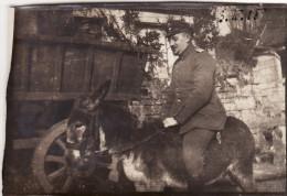 Photo Février 1915 CLAMECY - L'officier Allemand Weber (IR 52) Sur Un âne (A118, Ww1, Wk 1) - War 1914-18