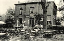 BELGIQUE - HAINAUT - HONNELLES - ROISIN - CAILLOU QUI BIQUE - Château Des Bargettes. - Honnelles