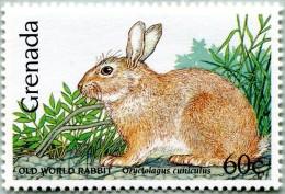 N° Yvert 1867 - Timbre De Grenade (1990) - MNH - Orystolagus Cuniculus (JS) - Grenada (1974-...)
