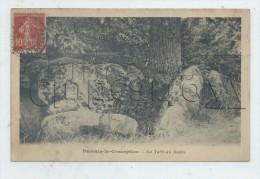Passais Ou Passais-la-Conception (61) :  La Table Au Diable En 1906 PF. - Otros Municipios