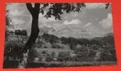 Cordon - ( Haute Savoie ) - Les 4 Têtes ( 2400 M ) Et La Pointe Percée ( 2752 M ) ---------- 304 - Autres Communes