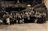 "92 ROBINSON ""Le Grand Arbre"" Carte Photo Du 30-10-1934 (voir Dos) - Le Plessis Robinson"