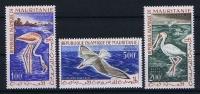 MAURITANIE Mi Nr 178 - 180   MH/* Avec  Charnière  Oiseaux Birds   1961 - Mauritanie (1960-...)
