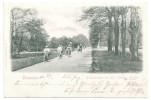 AK DRESDEN Radfahrallee Im Königlichen Großen Garten, Radfahrer 1900 - Dresden