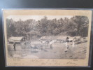 CEYLON RIVER SCENE - Cartes Postales