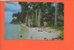 TAHITI - La Baie Poissonneuse D´AFAREAITU, MOOREA - Photo By Afo Giau(pli Sur La Droite) - Polynésie Française