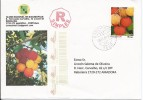 LSJP PORTUGAL COVER PERSONALISED STAMP FRUIT FRUTA MEDRONHO 2010 - 1910-... Republic