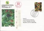 LSJP PORTUGAL COVER PERSONALISED STAMP FRUIT FRUTA AMORA SILVESTRE 2010 - 1910-... Republic