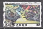 BARBADOS  537   (o)   UNDERWATER  SEA  LIFE - Barbados (1966-...)