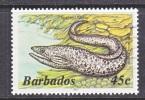 BARBADOS  650 D   (o)   Wmk. 384  SEA LIFE  MOREY - Barbados (1966-...)