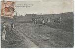 Erithrée, Colonia Eritrea Regno D´Italia, Adi Ugri. Agricultura, Una Squadra Di Alunni Al Lavoro - Erythrée