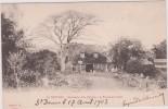 LA  REUNION ; Habitation D Un Planteur A La  Rivière Des  Pluies, ST DENIS 1903 - Saint Denis