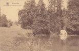 Gérouville - Une Cascade Aux étangs De La Soye - Meix-devant-Virton