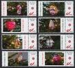 SERIE COMPLETE 10 TIMBRES : NOEL KERSTMIS WEIHNACHTEN CHRISTMAS MY DUOSTAMP ** MNH DIT IS BELGISCH AJEKO CECI EST BELGE - Personalisierte Briefmarken