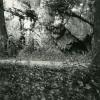 Belgique Caverne Dans La Foret D' Ardennes Ancienne Photo Stereoscope Amateur Possemiers 1900 - Photos Stéréoscopiques