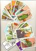 TAROT CARDS LARGE  ARCANA 36  PCS +BOOK - Tarots