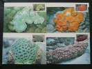Carte Maximum Card (x4) Corail Coraux Corals Thailande Ref 72079 - Marine Life