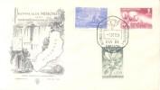 PROVINCIA DE MISIONES ANTES TERRITORIO NACIONAL DE MISIONES FDC AÑO 1956 REPUBLICA ARGENTINA - Argentine