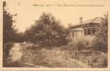 NIJLEN: Villa 'Wilde Roos' In Kempische Boschomgeving - Nijlen