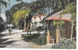 GIBRALTAR - Alameda, Rustic Arbour - Gibraltar