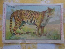 Chromo -pub Jacquemaire Bledine--le Tigre - Non Classés