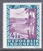 INDONESIA   C 9      * - Indonesia
