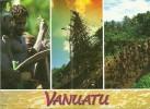 Vanuatu - CPM Neuve ** - Unused Postcard - Saut Du Gol - N'Gol - Ile Pentecost Island Traditional Life - Vanuatu