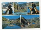 SWITZERLAND - AK 240472 Hospice Grand-Saint-Bernard - VS Valais