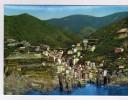 2873  Postal   Italia Cinque  Terre ,riomaggione - La Spezia