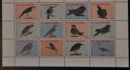 SINT MAARTEN ++ NEW ++ 2015 BIRDS OISEAUX VOGELS MNH NEUF ** - Curaçao, Nederlandse Antillen, Aruba