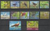 Iles Salomon Oiseaux 2001 Avec Surcharge SPECIMEN ** Solomon Islands Birds 2001 With SPECIMEN Overprint - Otros