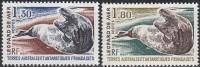 TAAF 1980 Yvert 89 - 90 Neuf ** Cote (2015) 4.00 Euro Le Léopard De Mer - Terres Australes Et Antarctiques Françaises (TAAF)