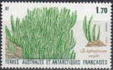 TAAF 1988 Yvert 131 Neuf ** Cote (2015) 1.00 Euro Flore Antarctique Elaphoglossum Randii - Terres Australes Et Antarctiques Françaises (TAAF)