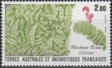 TAAF 1989 Yvert 143 Neuf ** Cote (2015) 1.40 Euro Flore Blechnum Penna Marina - Terres Australes Et Antarctiques Françaises (TAAF)