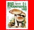 KAMPUCHEA - Cambogia - Usato - 1985 - Funghi - Mushrooms - Hebelona Crustuliniforme - 1.00 - Kampuchea