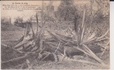 GUERRE DE 1914 - Guerra 1914-18
