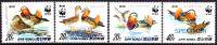 KOREA DPR (north) 1987 WWF Birds A SPECIMEN SET:4    [spécimen,Muster,muestra,saggio] - W.W.F.