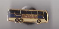 PIN´S  THEME  TRANSPORT  BUS SALAUN  DE PONTS DE BUIS EN FINISTERE - Transports