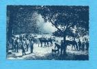 Oise 1915. - Militaires - Artillerie Au Bivouac. - France