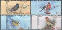 """Moldova 2015 """" Birds. Sparrows """" 4v  MNH** - Cernícalo"""