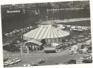 CIRCO---  NOCK IN GENF  PLAINE  PLAINPALAIS-.-SOUVENIR   -- FOTO  ANNI 50-60 - Circo