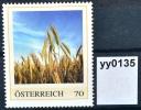 Bier, Beer, Biere, Cerveza, Bier Brauen, Gerste, Getreide, AT 2013 ** (pe135 ) - Autriche