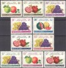 Afghanistan**RED CRESCENT-RED CROSS-10vals-1961-FRUIT-Apples-Grapes-Melons-Pomegranates-MNH-medical-health-welfare-natur - Sellos