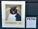 Felsenpinguin, Eudyptes Chrysocome, Pinguin, Vogel, Bird, Oiseau, Pajaro, PM AT 2011 ** (pe760 ) - Autriche