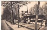 75 - Paris - Les Bouquinistes Sur Les Quais - Editeur: Chantal N°423 CPSM De 1953 - Petits Métiers à Paris