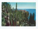 CPA CPM Monaco Les Jardins Exotiques Vue Sur Le Rocher De Monaco - Exotic Garden