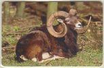GERMANY A11/02 Animal: Mufflon - Mint - A + AD-Serie : Pubblicitarie Della Telecom Tedesca AG