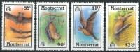 1988 Montserrat Fauna Pipistrelli Bats Chauves Souris Set MNH** Fo77 - Montserrat