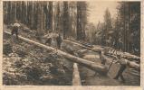 Holzschläger Im Schwarzwald - 1908 - Allemagne